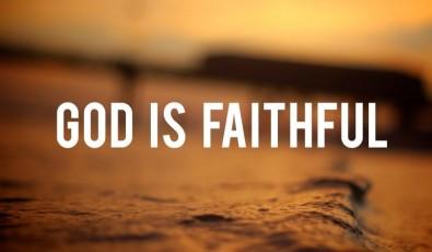 faithful-770x449